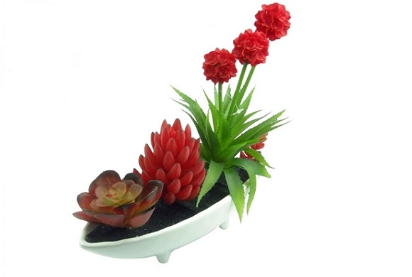 plantas-mini-jardim2