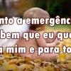 O Anjo da Emergência