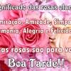 Significado das rosas claras