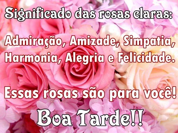 boa-tarde-rosas-claras