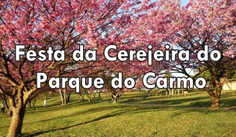 cerejeira5