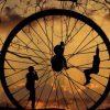 A Roda da Fortuna da Vida