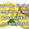 Suco de limão e gengibre é bom para baixar o colesterol