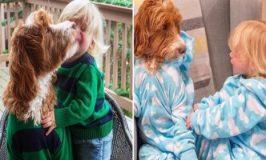 Menino e seu cãozinho usam o mesmo look e fazem sucesso nas redes sociais
