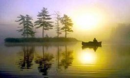 Buscando a serenidade