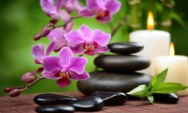 Como atrair prosperidade através das flores usando Feng Shui