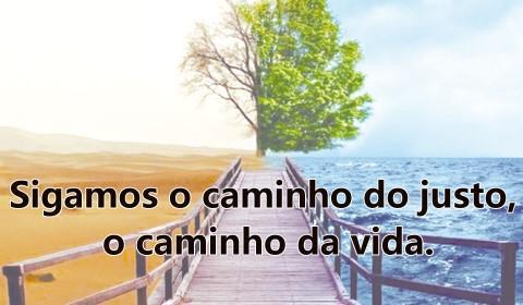 Salmo 1