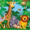 Sonhar com Zoológico