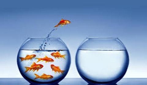 Transformar o dia com atitudes positivas